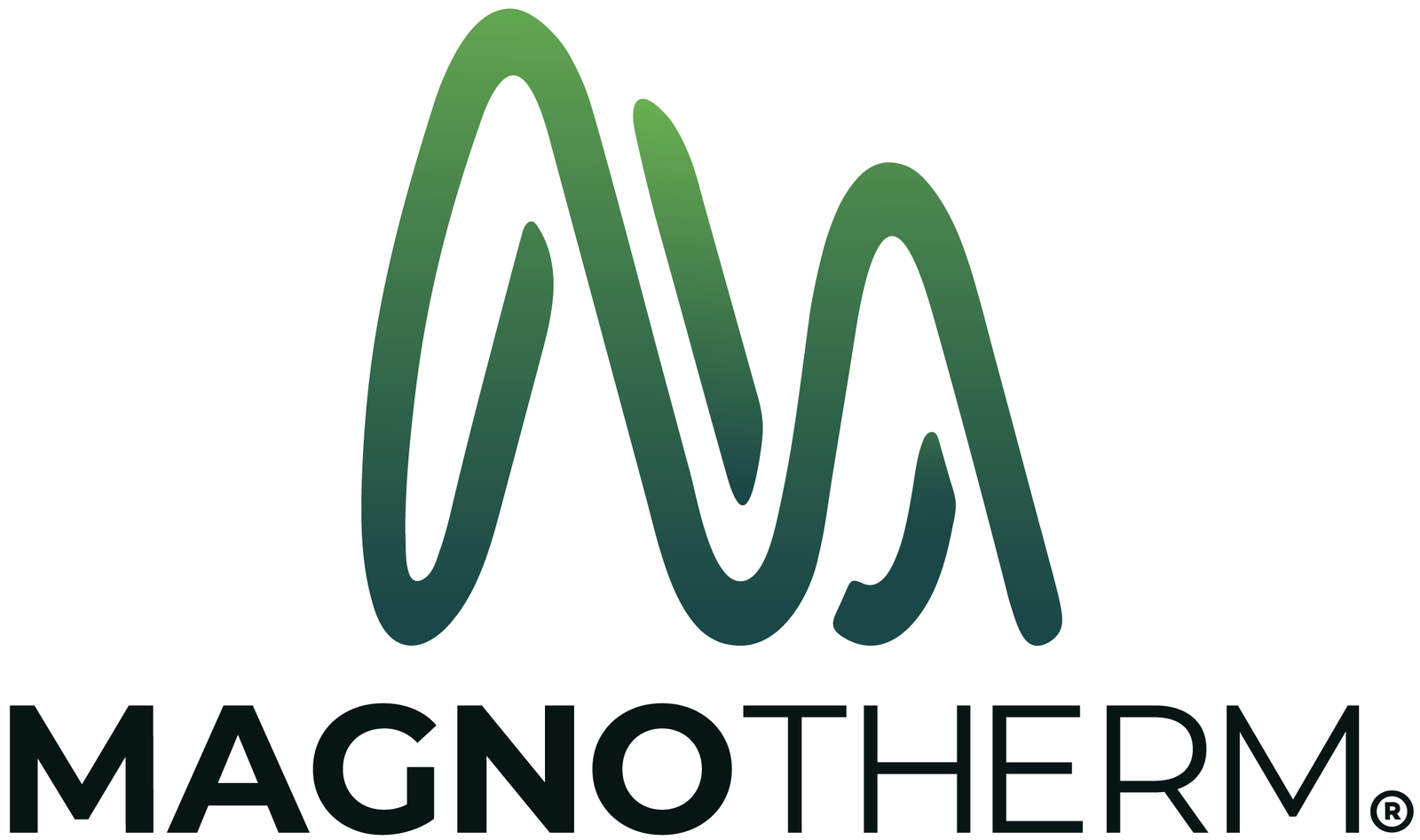 MagnoTherm Logo